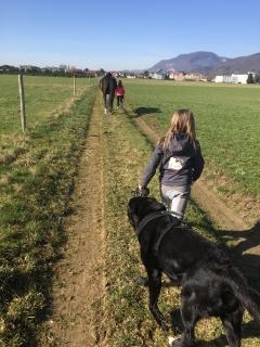 Pferderspatziergang mit Sheela 007