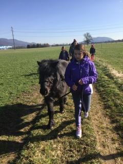 Pferderspatziergang mit Sheela 010
