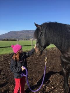 Pferderspatziergang mit Sheela 082